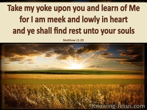 Matthew 11:29 Take My Yoke Upon You (brown)