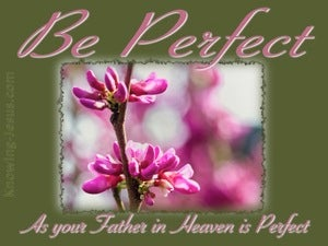 Matthew 5:48 Be Perfect (pink)