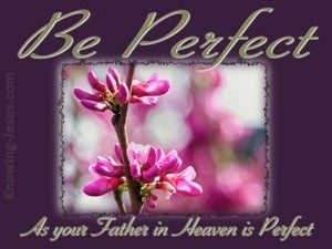 Matthew 5:48 Be Perfect (purple)