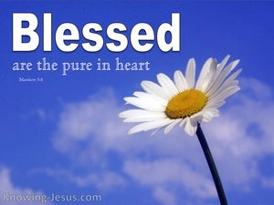 Matthew 5:8 Blessed Are The Pure In Heart white
