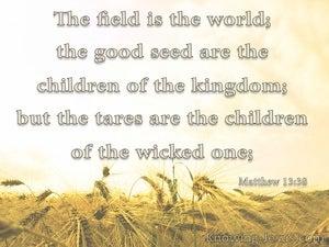 Matthew 13:38 The Field Is The World (beige)