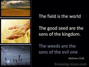 Matthew 13:38 The Field Is The World (black)
