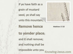 Matthew 17:20 Faith As A Grain Of Mustard Seed (white)