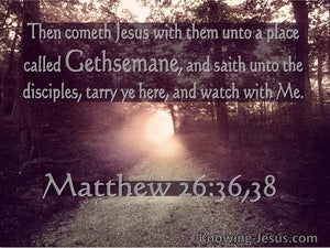 Matthew 26:36 Then Cometh Jesus To A Place Called Gethsemane (utmost)04:05