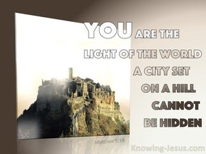 Matthew 5:14 You Are The Light Of The World (pink)