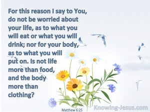 Matthew 6:25 Do Not Be Worried About Your Life (blue)