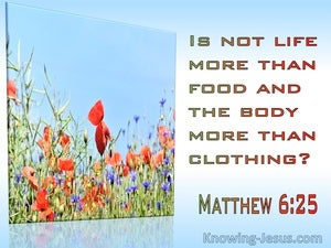 Matthew 6:25 Is Not Life More Than Food And The Body Than Clothing (red)