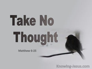 Matthew 6:25 Take No Thought (gray)