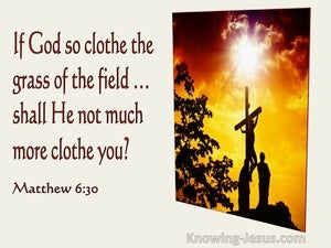 Matthew 6:30 If God So Clothe The Grass Of The Field... (utmost)01:26 : Calligraphic 421 BT
