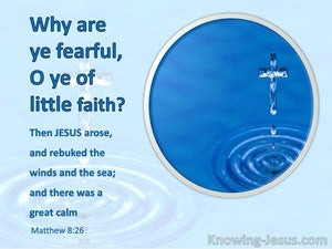 Matthew 8:26 Why Are Ye Fearful O Ye Of Little Faith (aqua)