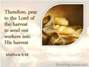Matthew 9:38 Pray That He Will Send Forth Labourers Into His Harvest (beige)
