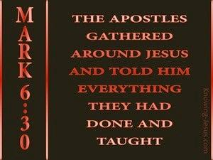 Mark 6:30 The Disciples Gathered Around Jesus (black)