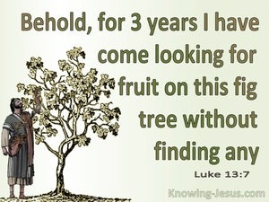 Luke 13:7 Parable Of The The Barren Fig Tree (green)