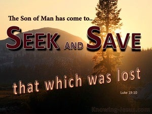 Luke 19:10 The Son Has Come To Seek and To Save The Lost (brown)