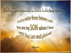 Luke 3:22 You Are My Beloved Son gold