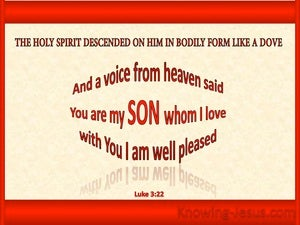 Luke 3:22 You Are My Beloved Son red