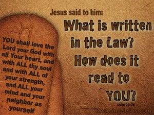 Luke 10:26 What Is Written In The Law (brown)