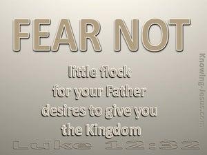 Luke 12:32 Fear Not Little Flock (brown)