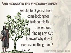 Luke 13:7 Parable Of The The Barren Fig Tree (beige)