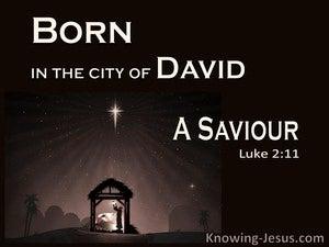 Luke 2:11 A Saviour Who Is Christ The Lord (black)