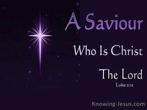 Luke 2:11 A Saviour Who Is Christ The Lord (purple)