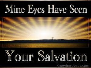 Luke 2:30 Spiritual Sight (devotional)07:09 (brown)