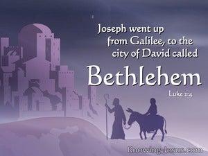 Luke 2:4 Joseph Also Went Up From Galilee (white)
