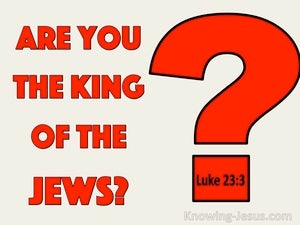 Luke 23:3 Are You The King Of The Jews (red)