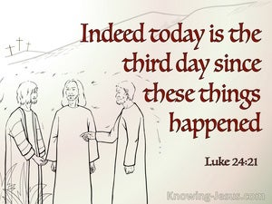 Luke 24:21 Indeed Today Is The Third Day Since These Things Happened (gray)