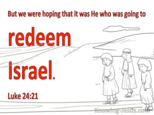 Luke 24:21 We Were Hoping This Was He Who Was To Redeem Israel (white)