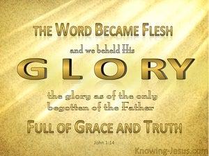 Image result for john 1:14-18