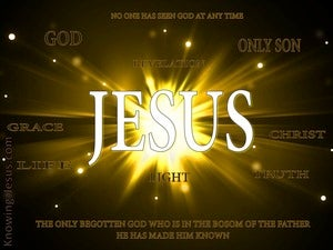 John 1:18 No One Seen God At Any Time white