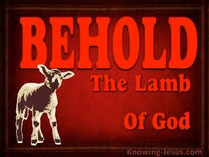 Behold : The Lamb of God devotional
