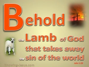 John 1:29 Behold, The Lamb Of God red
