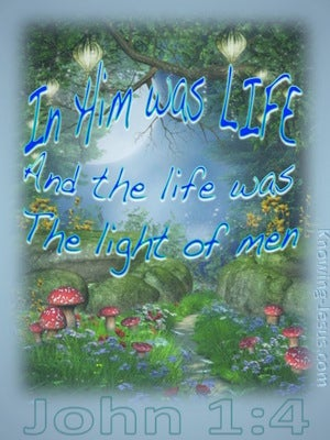 John 1:4  In Him Was Life blue