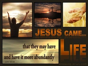 John 10:10 Life More Abundantly brown
