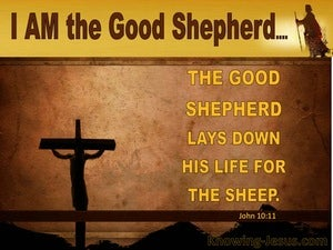 John 10:11 The Good Shepherd Lays Down His Life brown
