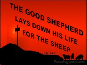 John 10:11 The Good Shepherd Lays Down His Life red