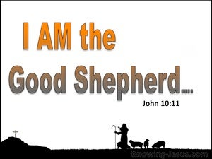 John 10:11 The Good Shepherd Lays Down His Life white