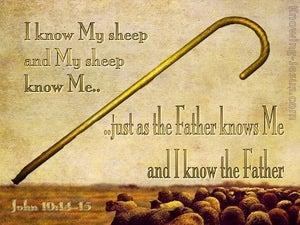 John 10:14,15 I Know My Sheep (beige)