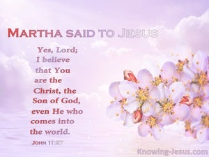 John 11:27 You Are Christ The Son Of God (pink)