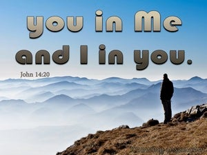John 14:20 You In Me And I In You brown