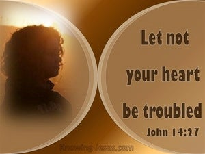 John 14:27 Let Not Your Heart Be Troubled brown
