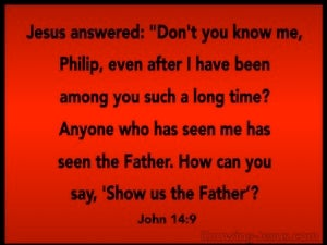 John 14:9 He Who Has Seen Me Has Seen The Father red