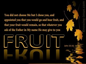 John 15:16 You Did Not Choose Go And Bear Fruit brown