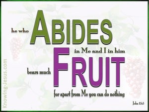 John 15:5 He Who Abide In Me Bears Much Fruit (white)