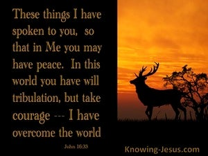 John 16:33 Jesus Said Take Courage I Have Overcome The World (brown)