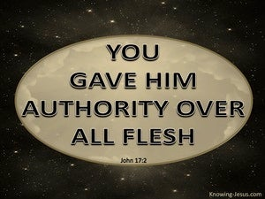 John 17:2 You Gave Him Authority Over All Flesh gold