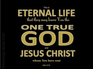 John 17:3 This Is Eternal Life black