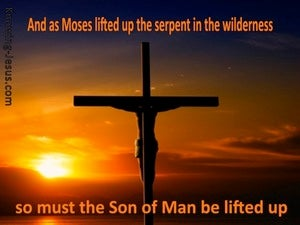 John 3:14 The Son Of Man Must Be Lifted Up orange